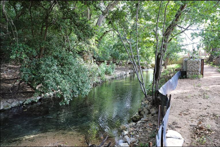aquatic restoration