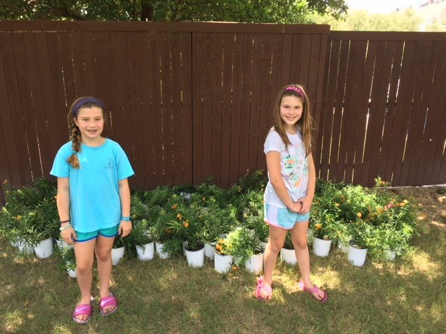 Children from McKinney ISD Monarch project planting milkweed