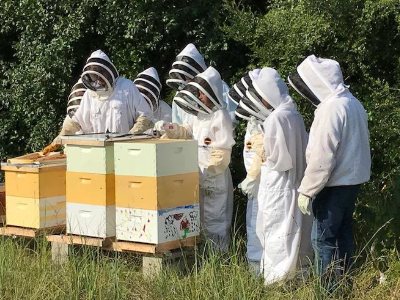 Katy High School student beekeeping club