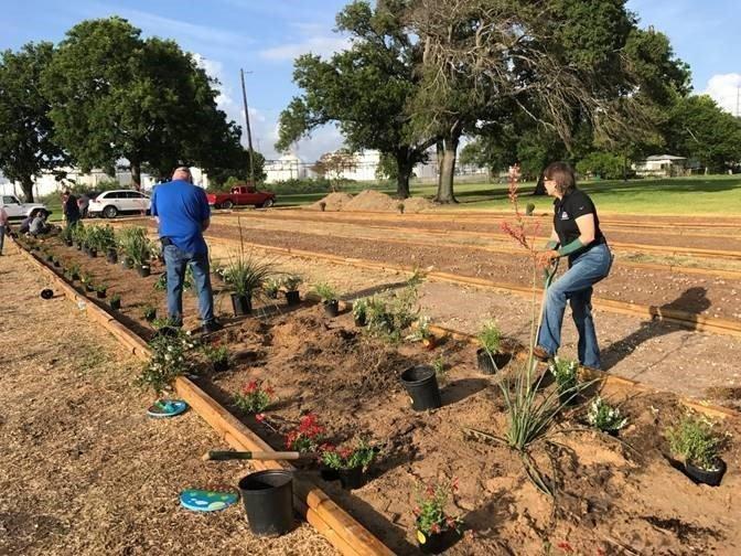 Marathon volunteers planting the Learning Lanes