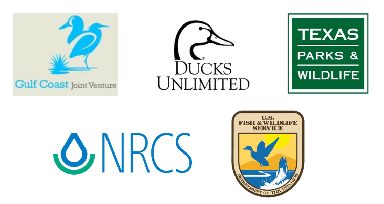 texas prairie wetlands project partners