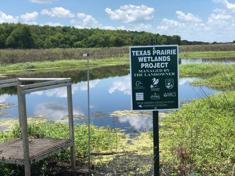 texas prairie wetlands project