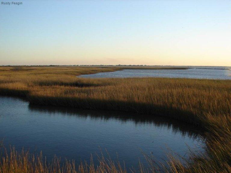 Sunset in a salt marsh at Jumbile Cove, Galveston, Texas