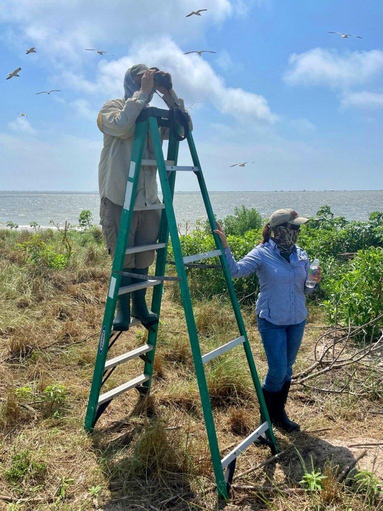 Audubon Bird Census Volunteers